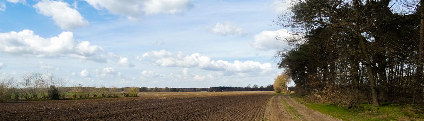 ein Feldweg unter Wolken